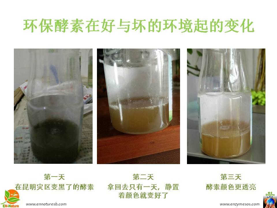 环保酵素净化污水